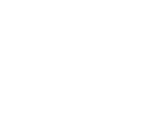 the cycle comunidad en español